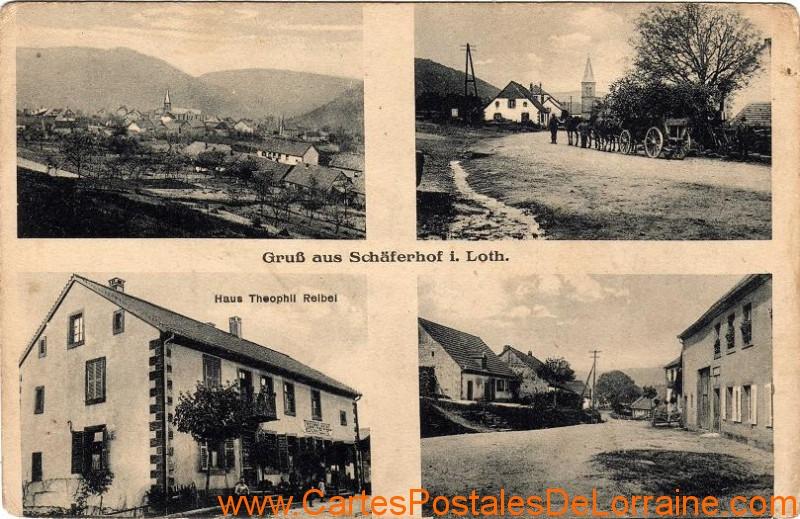 57Schaferhof001.jpg